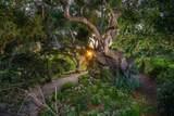 771 Garden Ln - Photo 40