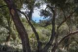 208 Eucalyptus Hill Dr - Photo 24