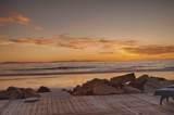 3078 Solimar Beach Dr - Photo 25