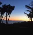 1431 Shoreline - Photo 9