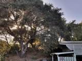735 Alamo Pintado Rd - Photo 11