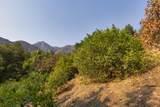 904 Toro Canyon Rd - Photo 13