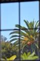 2316 De La Vina St - Photo 22