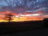 2805 Refugio Rd - Photo 44