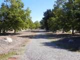 950 Alamo Pintado Rd - Photo 3