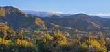 305 Sierra Vista - Photo 39