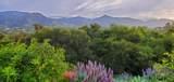 305 Sierra Vista - Photo 40