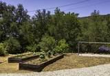 37 San Marcos Trout Clb - Photo 29
