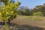 1138 Camino Del Rio - Photo 9
