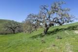 5410 Foxen Canyon Rd - Photo 4