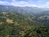 3589 Toro Canyon Park - Photo 2