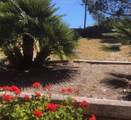 2830 San Marcos Ave - Photo 4