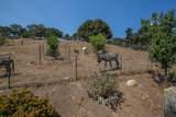 1709 Ballard Canyon Rd - Photo 20