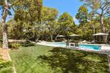 206 Olive Mill Road - Photo 42