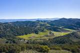 3101 Drum Canyon Rd - Photo 23