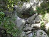 780 Toro Canyon Rd - Photo 13