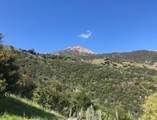 1535 San Roque - Photo 10