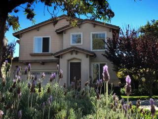 6847 Buttonwood Ln, Goleta, CA 93117 (MLS #17-1016) :: The Zia Group