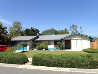 250 Valdez Ave, Goleta, CA 93117 (MLS #17-1644) :: The Zia Group