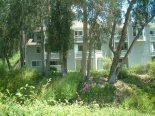 7628 Hollister Ave #236, Goleta, CA 93117 (MLS #17-1662) :: The Zia Group