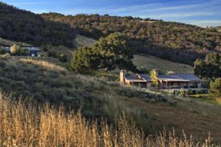 132 Hollister Ranch Rd, Gaviota, CA 93117 (MLS #17-1699) :: The Zia Group