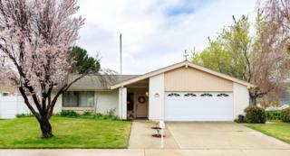 390 Terrace Ct, Buellton, CA 93427 (MLS #17-658) :: The Zia Group