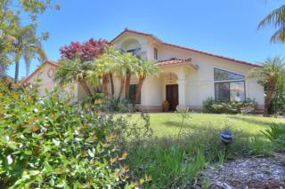 4601 Sierra Madre Rd, Santa Barbara, CA 93110 (MLS #RN-13573) :: The Zia Group