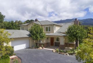 4622 Via Saladita, Santa Barbara, CA 93111 (MLS #RN-13575) :: The Zia Group