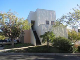 3570 Modoc Rd #13, Santa Barbara, CA 93105 (MLS #17-653) :: The Zia Group