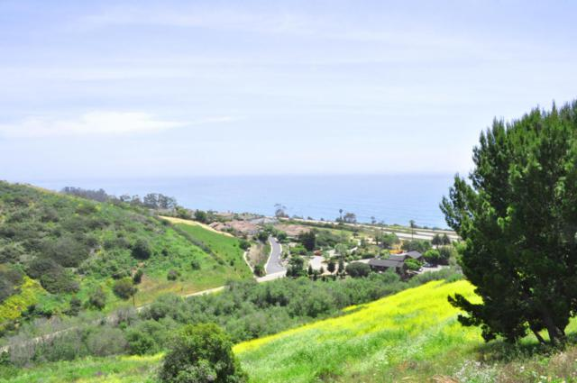 2560 Whitney Ave, Summerland, CA 93067 (MLS #17-1460) :: The Epstein Partners