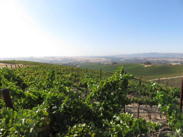 1172 San Marcos Rd, Paso Robles, CA 93446 (MLS #17-3153) :: The Epstein Partners