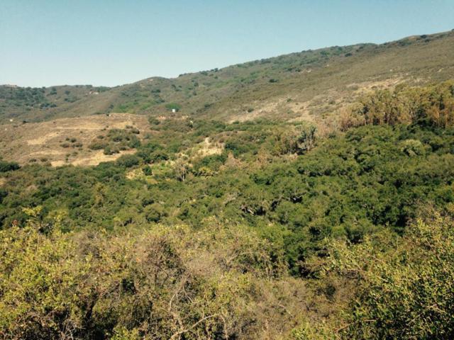 2125 Refugio, Goleta, CA 93117 (MLS #18-1773) :: Chris Gregoire & Chad Beuoy Real Estate