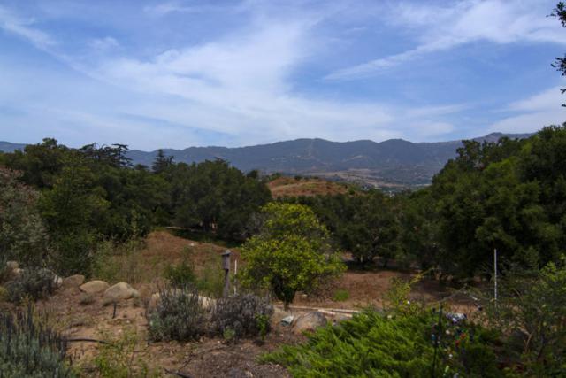761 Via Tranquila, Santa Barbara, CA 93110 (MLS #18-2490) :: The Zia Group