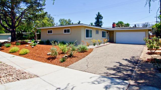 6109 Pedernal Ave, Goleta, CA 93117 (MLS #18-2883) :: The Epstein Partners