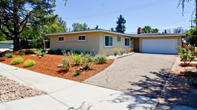 6109 Pedernal Ave, Goleta, CA 93117 (MLS #18-2883) :: The Zia Group