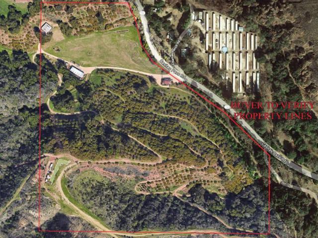 5208 Casitas Pass Rd, Ventura, CA 93001 (MLS #18-2971) :: Chris Gregoire & Chad Beuoy Real Estate