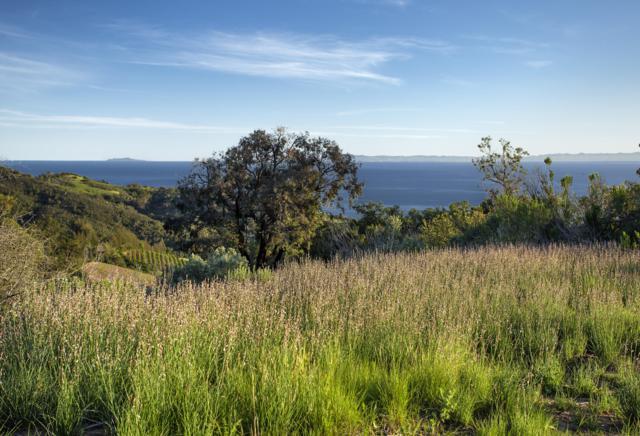 785/805 Toro Canyon, Santa Barbara, CA 93108 (MLS #18-3407) :: The Epstein Partners