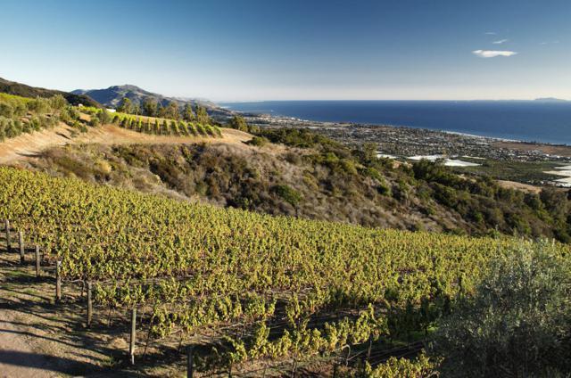 580 Toro Canyon Park Rd, Santa Barbara, CA 93108 (MLS #18-3465) :: The Zia Group