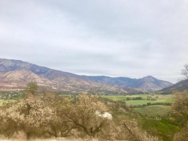 11600 Sulphur Mountain Rd, Ojai, CA 93023 (MLS #18-410) :: The Zia Group
