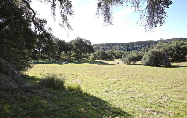 5395 E Camino Cielo, Santa Barbara, CA 93105 (MLS #18-430) :: The Zia Group