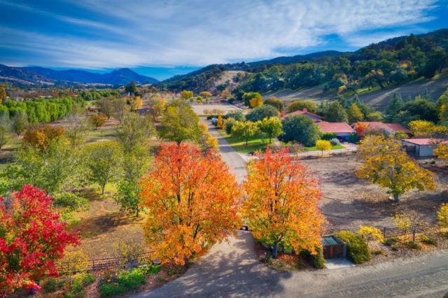 12150 Mountain Lion Rd, Ojai, CA 93023 (MLS #18-4320) :: The Zia Group