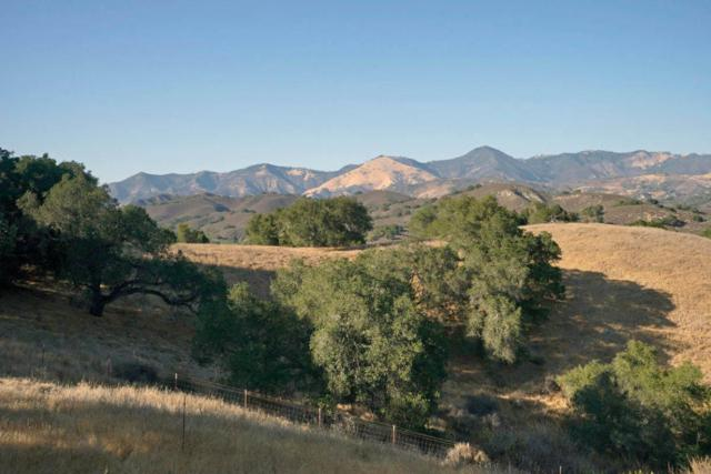 4213 Tims Rd, Santa Ynez, CA 93460 (MLS #18-918) :: The Zia Group