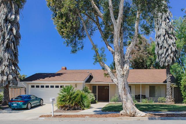 421 Camino Laguna Vista, Goleta, CA 93117 (MLS #19-1828) :: The Zia Group