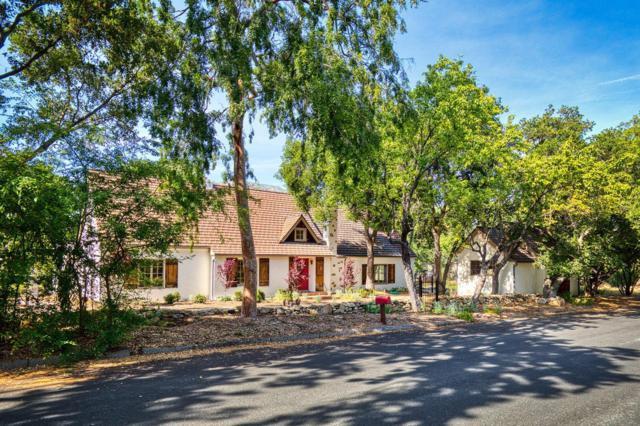 504 W Eucalyptus St, Ojai, CA 93023 (MLS #19-1842) :: The Zia Group