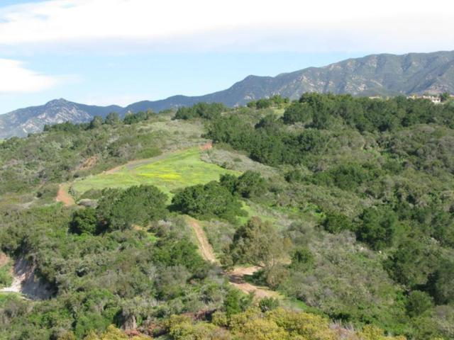 3589 Toro Canyon Park, Santa Barbara, CA 93108 (MLS #19-1984) :: The Zia Group