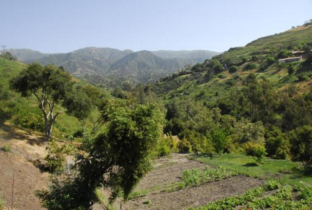 1487 Sycamore Canyon Rd, Santa Barbara, CA 93108 (MLS #19-200) :: The Epstein Partners