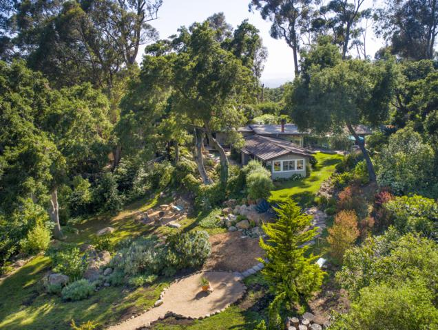 750 Ladera Ln, Montecito, CA 93108 (MLS #19-2097) :: The Zia Group