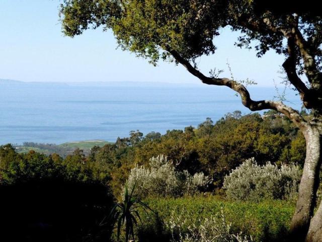904 Toro Canyon Rd, Montecito, CA 93108 (MLS #19-2290) :: The Epstein Partners