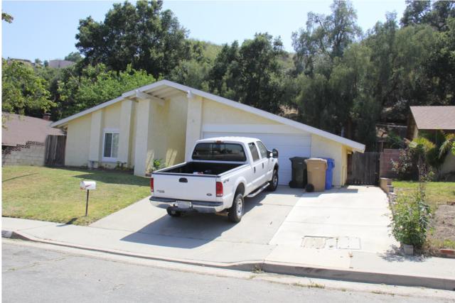 1118 Fuchsia Ln, Santa Paula, CA 93060 (MLS #19-2388) :: The Zia Group