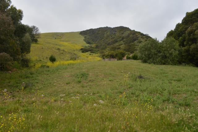 67 Hollister Ranch Rd, Goleta, CA 93117 (MLS #19-2461) :: The Epstein Partners
